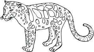 Wild Animals Coloring Pages Printable Book Also Excellent Ideas