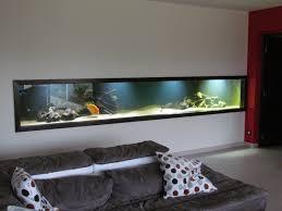 aquarium dans le mur mon aquarium cabinet médical design design