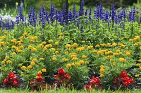 9 Ways To Mosquito-proof Your Yard For Summer – DrDrainage – Medium Mosquitoproofing Your Garden French Gardener Dishes Mosquito Control Backyard Ponds Home Outdoor Decoration How To Reclaim Yard From Mosquitoes Wisconsin Mommy Mosquitoproof 0501171 Youtube Natural Proof This Year Image 59 Best Images About Dreaming Living On Pinterest 9 Ways Mosquitoproof For Summer Drainage Medium Tips Hgtvs Decorating Design Blog Hgtv