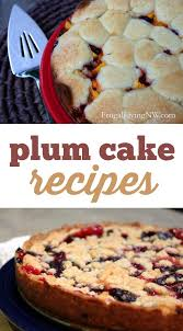 Plum Cake Recipes 2 Delicious And Simple Ways To Use Fresh Plums