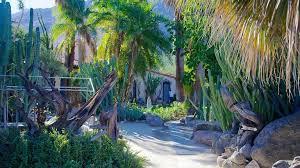 Visit Moorten Botanical Garden and Cactarium in Palm Springs