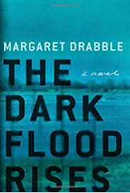 The Dark Flood Rises A Novel