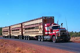 Photo By ROGER EVANS | Pinterest | Road Train, Mack Trucks And ... What Are We Gonna Do With Them Livestock Hauling Industry 10 Teresting Facts About The Trucking Industry Pohl Transportation Ooida Member Transforms Home Into Makeshift Museum Semi Truck Axle Cfiguration Evan Dave Evans Transports Inc Home Facebook Trscanada Hwy Absk Pt 16 Trucking Company Sues Repair Shop For Ineffective Repairs To Barrett Family Enterprises Llc Columbia Iegally Parked Cmv Mo Tractor Trailer Wreck Lawyer Matt Sons Jasko Companies Truck Driving Jobs July 2013 Roycemcleanracing