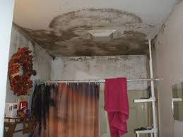 Zinsser Popcorn Ceiling Patch Home Depot by Cleaning Up Mold On Ceiling Integralbook Com