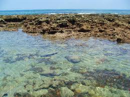 bathtub beach stuart fl google search florida the land that i
