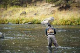 Best Fly Rods Of 2017-2018 | Switchback Travel The Fiberglass Manifesto Introducing Red Truck Glass Tarpon Archives Fly Fishing Co Company 926 Photos 13 Reviews Home Made Rod Carrier Miscellaneous Building A Vault Can Make Your Batmobile Of Tfm Store 12 Tips For Epic Trips On Cheap Gink Switch Techniques Shasta Trout Review Fish California Youtube