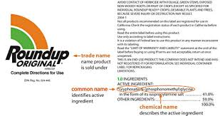 Monsantos Roundup More Toxic Than Glyphosate Alone