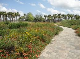 Wildflower Mound – Naples Botanical Gardens – Landscape Invocation