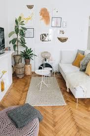 deko ideen pflanzen wohnzimmer caseconrad