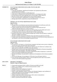 Plant Human Resources Manager Resume Samples | Velvet Jobs Human Rources Resume Sample Writing Guide 20 Examples Ultimate To Your Cv Powerful Example Associate Director Samples Velvet Jobs Specialist Resume Vice President Of Sales Hr Executive Mplate Cv Example Human Rources Best Manager Livecareer By Real People Assistant Amazing How Write A Perfect That Presents Your True Skill And