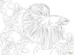 Vector Hand Drawn Fairy Flying In Flower Land For Color Book Adult