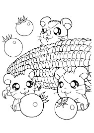 Kawaii Coloring Pages Mamegoma