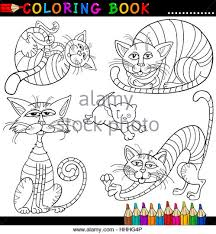 Pets Illustration Cat Baby Kitten Cartoon Pussycat Domestic
