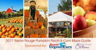 Ms Heathers Pumpkin Patch Louisiana by Pumpkin Patch U0026 Corn Maze Guide Baton Rouge