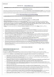 Information Analyst Resume Example It Security Sample For 1