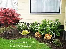 Backyard Amusing Colourful Square Rustic Grass Front Yard Landscaping Plants Decorative Orange Flowers Design