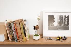 100 Tree House Studio Wood Miniature Vase Living Duncan Shotton Design