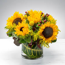 Sunny Sunflowers By BloomNation™ In Kissimmee, FL | Kissimmee Florist 20 Off Flying Flowers Coupons Promo Discount Codes Wethriftcom Daisy Me Rollin By Bloomnation In Ipdence Oh Nikkis 21 Blooms Succulents Box Brighton Mi Art In Bloom Lavender Passion Bouquet Peabody Ma Evans Home For The Holidays By Dallas Tx All Occasions Florist Take Away Daytona Beach Fl Zahns More My Garden Carnival Dear Mom Avas Florist Coupon Code 3ds Xl Bundle Target