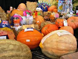 Sarasota Pumpkin Festival by Pumpkin Festival Listings Worldwide