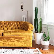 Tufted Velvet Sofa Toronto by Best 25 Velvet Couch Ideas On Pinterest Velvet Sofa Green Sofa