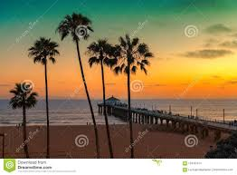 Palm Trees On Manhattan Beach At Sunset In California Los Angeles USA Vintage Processed Fashion Travel And Tropical Concept