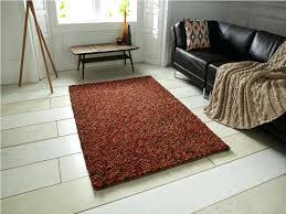 funky area rugs cheap sisal lowes retro floors shag carpet tiles
