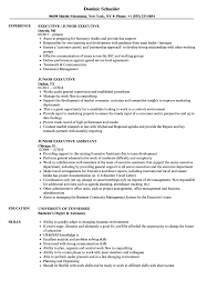 Junior Executive Resume Samples | Velvet Jobs Executive Resume Samples And Examples To Help You Get A Good Job Sample Cio From Writer It 51 How To Use Word Example Professional For Ms Fer Letter Senior Australia Account Writing Guide 20 Tips Free Templates For 2019 Download Now Hr At By Real People Business Development Awardwning Laura Smith Clean Template Cover Office Simple Cv Creative Modern Instant Marissa Product Management Marketing Executive Resume Example
