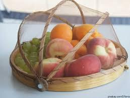 fruchtfliegen beseitigen die besten hausmittel gegen