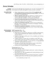 Sample Marketing Resume Summary Advertising Account Executive Senior Res