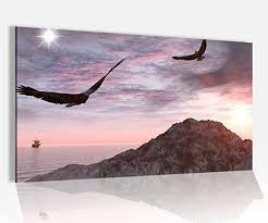 acrylglasbild 80x50cm vogel landschaft adler berg felsen