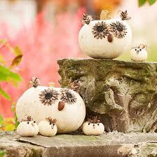 Cute Pumpkin Carving Ideas by Cute Pumpkin Carving Ideas White Owl Pumpkin Owl Pumpkin Ideas