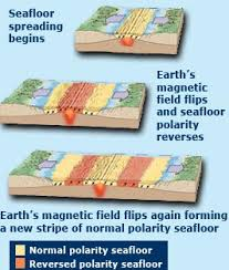 Evidence For Seafloor Spreading Comes From by Dive And Discover Mid Ocean Ridges