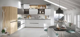 light vs kitchen cabinets what to choose