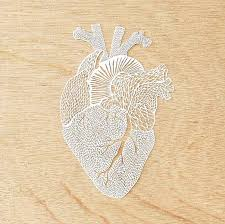 Ali Said That She Has No Formal Training In Art And Design Started On Her Paper Cutting Journey When Decided To Try The Craft Out Was