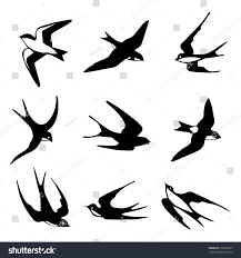 Set Black Isolated Vector Silhouettes Birds Stock Vector 238122697 ... Swallow Tattoo Shoulder Blades 100 Small Bird Tattoos Designs Colorful Barn With Rose And Star Design By Renee 55 Best Golondrinas Images On Pinterest Bird Swallows And Art A Point Green Violet Custom Studio Royalty Free Stock Photo Image 25723635 Images For Silhouette Personal Interest Swallow Wikipedia 24 Henna Tattoos Tattoo 2016 What Your Means Secret Ink 50 Coolest On Chest Black Flying Banner Stencil Mithu Hassan