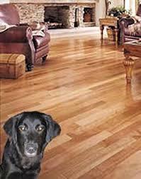 hardwood floor care maintenance with video