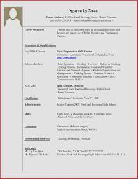 Resume Examples No Work Experience Inspirational With For