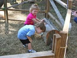 Pumpkin Patch With Petting Zoo by Conner Family Blog Texas State Railroad Pumpkin Patch Express
