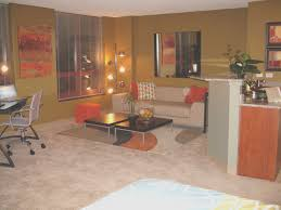 Mini Studio Apartment Ideas Beautiful Crappy Interior Design