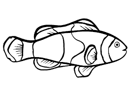 Simple Fish Coloring Pages Printable Sheet Anbu