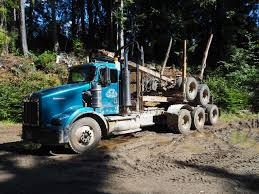 Kenworth T800B Log Truck – WD Moore Assets Driving Kenworths Erevolving T880 Truck News Kenworth C500 Self Loading Logging Part 3 Youtube Bc Trucks 03 Peterbilt Western Star White Truck Trailer Transport Express Freight Logistic Diesel Mack Vintage Or Old Truck Pictures Pre 1970 1988 T800 For Sale 541706 Miles Spokane Semitrckn Custom T904 Loaded With Logs Road Dcp 1 64 Scale 379 Small Bunk Day Cab Opt Black W 2015 Used T909 At Wakefield Serving Burton Sa Iid 1972 Lw Aths Duncan Show Flickr Australian B Double Log Pinterest 2018 Kenworth Australia