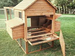 75 Creative And Low-Budget DIY Chicken Coop Ideas For Your ... Building A Chicken Coop Kit W Additional Modifications Youtube Best 25 Portable Chicken Coop Ideas On Pinterest Coops Floor Space For And Runs Raising Plans 8 Mobile Coops Amazing Design Ideas Hgtv Pawhut Deluxe Backyard With Fenced Run Designs For Chickens Barns Cstruction Kt Custom Llc Millersburg Oh Buying Guide Hen Cages Wooden Houses Give Your Chickens Field Trip This Light Portable Pvc Diy That Are Easy To Build Diy