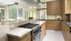 100 Kitchen Design Tips Islands Cooktops Sinks Chicago Architects