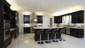 Busby Cabinets Gainesville Fl by 20 Beautiful Kitchens With Dark Kitchen Cabinets Dark Kitchen