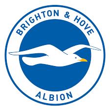 Brighton Hove Albion FC Wikipedia