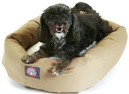 Coolaroo Dog Bed Large by Large Dog Beds Walmart Korrectkritterscom