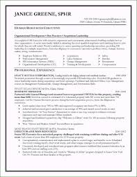 Resume Examples For Human Resources Manager Fantastic Resume ...