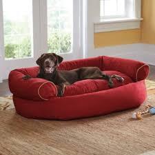 Sofa Dog Bed Chocolate XL 48 L x 38 W x 17 H Grandin Road Best