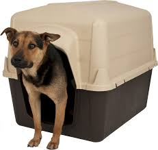 Aspen Pet Petbarn 3 Plastic Dog House, 50-90-lbs - Chewy.com Royal Canin Maxi Ageing 8 Plus Dog Food 15kg Petbarn Gamma2 Vittles Vault Pet Storage 15lb Chewycom How To Request A Free Frontgate Catalog Aspen 3 Plastic House 5090lbs May Catalogue 9052017 21052017 New Precision Products Old Red Barn Large Shop Warehouse Buy Supplies Online Exo Terra Intense Basking Spot Lamp Joy Love Hope Cow Pull Thru Leg Toy Medium Accsories Kmart Door Design Interior Terrific Trustile Doors For You Me Flat Roof Kennel Brown