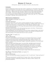 It Director Resume Sample